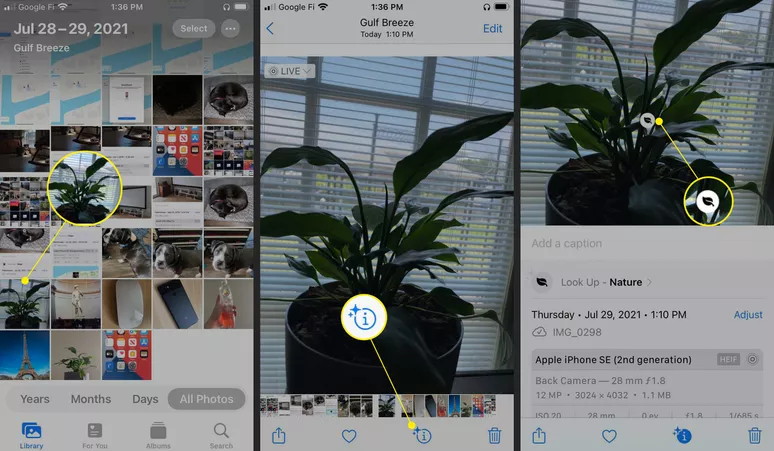 The 9 best hidden features in iOS 15 you probably didn't know 9