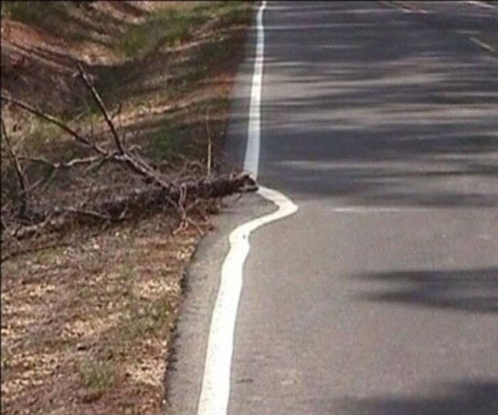 10 People Who Took Laziness To A New Level 10