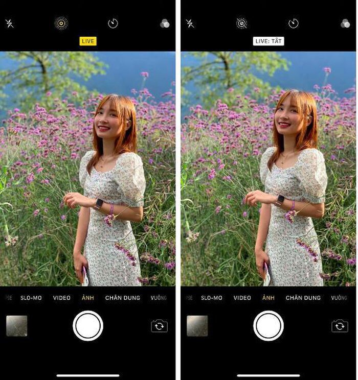 Here are 5 tips to help you take better photos with your iPhone 3