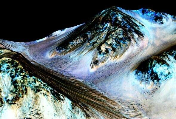 NASA conspiracy? Space agency's Spirit rover destroys 'alien dinosaur skull' on Mars 3