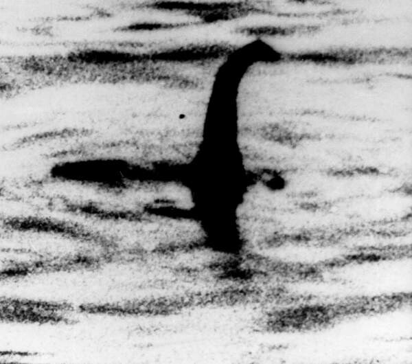 LOCHS LIKE A TURTLE! Loch Ness mystery solved? Scientist says Nessie is ancient sea TURTLE 'trapped' in lake 1