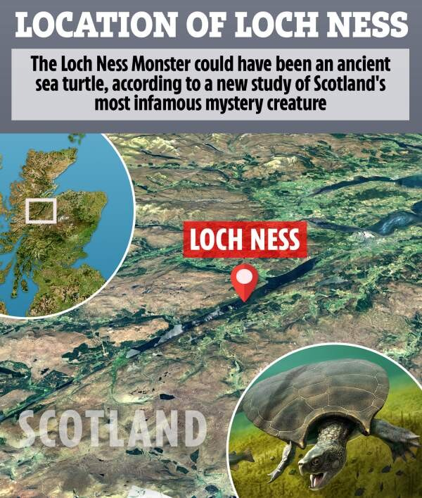 LOCHS LIKE A TURTLE! Loch Ness mystery solved? Scientist says Nessie is ancient sea TURTLE 'trapped' in lake 5