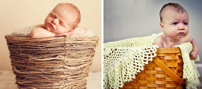 25 Funny Newborn Photoshoots That Didn't Go As Expected 21