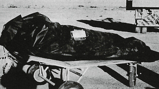 Air Force Intelligence Officer   Alien Was Recovered Called Eva And Was Male At New Mexico 2