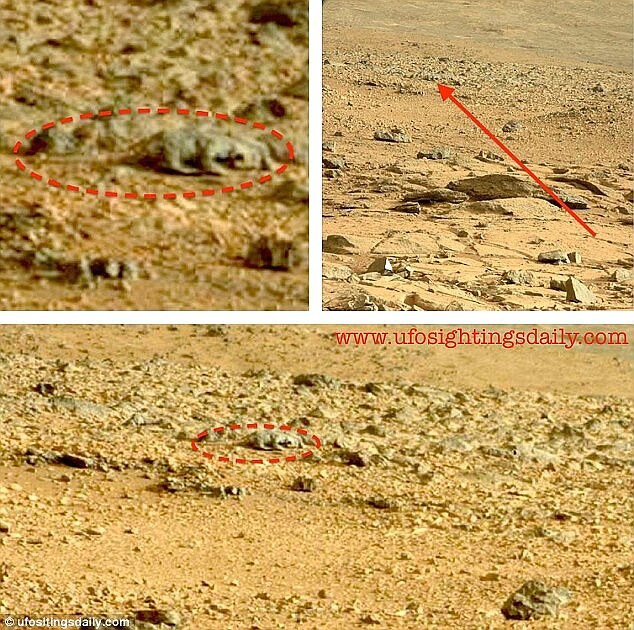 A New Alien Lizard Spotted On The Red Planet by NASA's Curiosity Rover 4