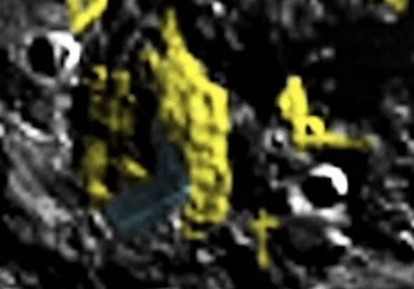Aliens on the Moon: UFO hunter is '100% confident' about alien structures on Moon's pole 2