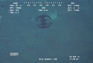 [Video] At the bottom of the ocean bizarre shape-shifting that looks like Аʟɪᴇпѕ creature was recorded 1