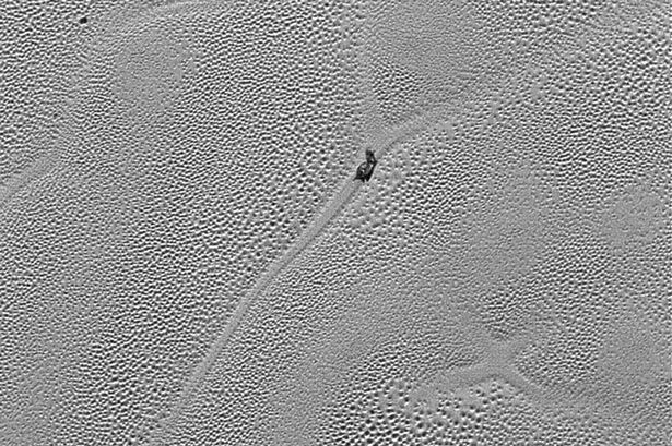 (VIDEO) A strange creature was captured sliding on The Surface of Pluto? What do you think? 4