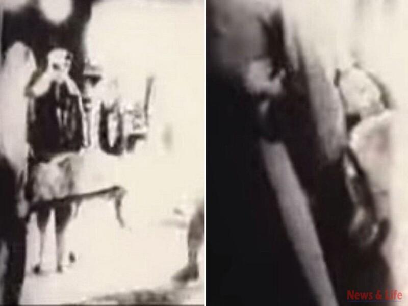 Unbelievable! CIA confirmed the 1947 Alien video 3