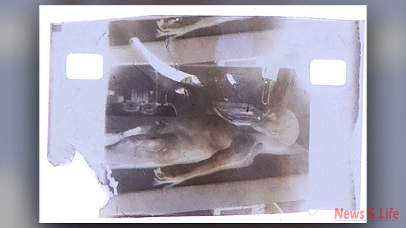 Unbelievable! CIA confirmed the 1947 Alien video 2